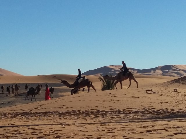 Ruta 5 dias desde Fez a Marrakech via el Desierto de Merzouga
