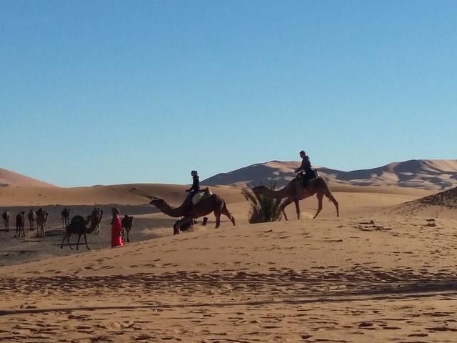 4 Days Desert Tour From Marrakech to Merzouga Desert